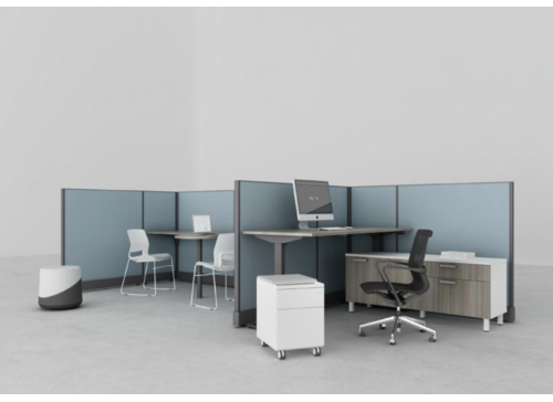 Friant Systems 2 Cubicle Workstation